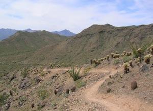 gila-620-trail